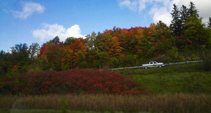 fall-colors-ontario-canada.jpg